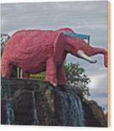 Pinky The Elephant At Cape Canaveral Wood Print