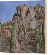 Pinnacle Peak Landscape Wood Print