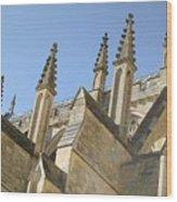 Pinnacles Wood Print