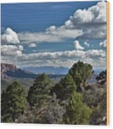 Pinon Forest At The Top Of Kolob Canyon Wood Print