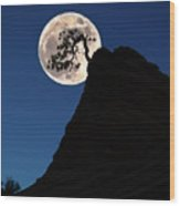 Pinon Pine And Moon Zion National Park  Wood Print