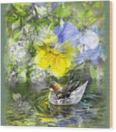 Pintail Pond Wood Print by Chuck Brittenham