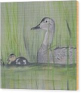 Pintails In The Reeds Wood Print