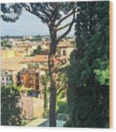 Pinus Pinea Wood Print