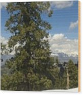 Pinus Tress  Wood Print