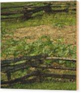 Pioneer Gardening Wood Print