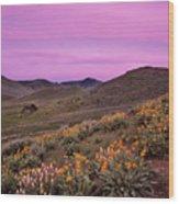 Pioneer Mountain Spring Wood Print