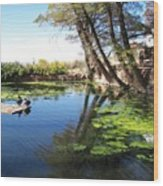 Pipe Springs Pond Wood Print