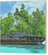Pirate Ship Cay Wood Print
