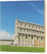 Pisa Panorama Wood Print