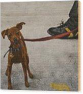 Pisa Puppy Wood Print