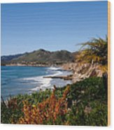 Pismo Beach California Wood Print
