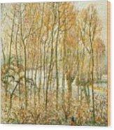 pissarro19 Camille Pissarro Wood Print