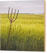Pitch Fork In Wheat Field Wood Print