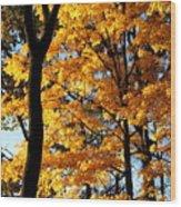Pitchfork In Autumn Light Wood Print