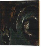 Piteye Wood Print