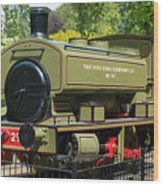 Pittencrieff Park Engine Wood Print