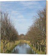 Pivka River Wood Print