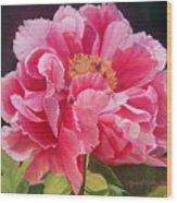 Pivoine Rose Wood Print