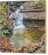 Pixley Falls State Park Lesser Falls Wood Print
