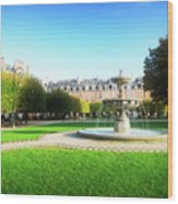 Place De Vosges, Paris Wood Print