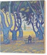 Place Des Lices St Tropez Wood Print
