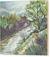 Placerita Creek 3 Wood Print