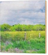 Plain Country Wood Print