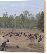 Plain Of Jars No.2 Wood Print