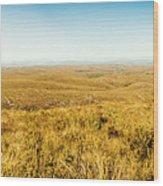 Plain Plains Wood Print