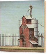 Plains Sentinel Wood Print