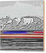 Plane At Airport 1 Wood Print by Steve Ohlsen