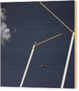Plane Goal Wood Print