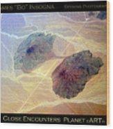 Planet Art Close Encounters Wood Print