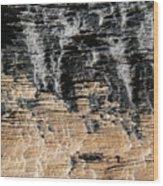 Planet Landing Wood Print