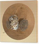 Planet Mars Via Phoenix Mars Lander Wood Print