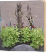 Plant Circle Wood Print
