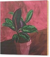 Plant In Ceramic Pot Wood Print