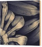 Plantains 1  Sepia Wood Print