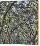 Plantation Drive Wood Print