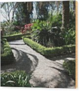Plantation Garden Wood Print