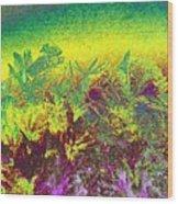 Plantation Wood Print