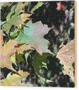 Planting Fields / Leaves Wood Print