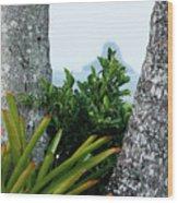 Plantside The Island Wood Print
