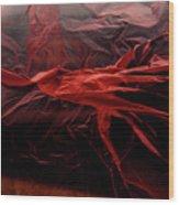 Plastic Bag 05 Wood Print by Grebo Gray