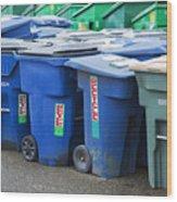 Plastic Garbage Bins Wood Print by Don Mason