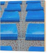 Plastic Sits Wood Print
