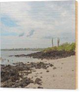Playa De La Estacion On Santa Cruz Island In Galapagos Wood Print