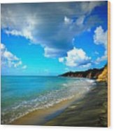 Playa Negra Wood Print