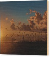 Playalinda Sunrise Wood Print
